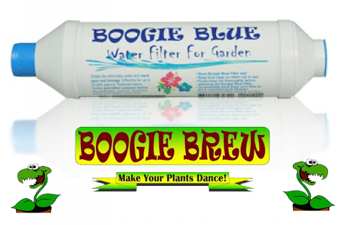 boogie-brew-filter-2015