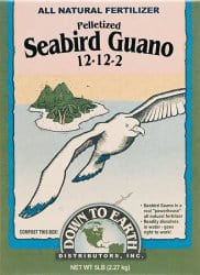 seabird guano
